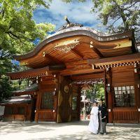 【大國魂神社の結婚式お呼ばれ】日本の古き良き伝統と格式を感じる和婚