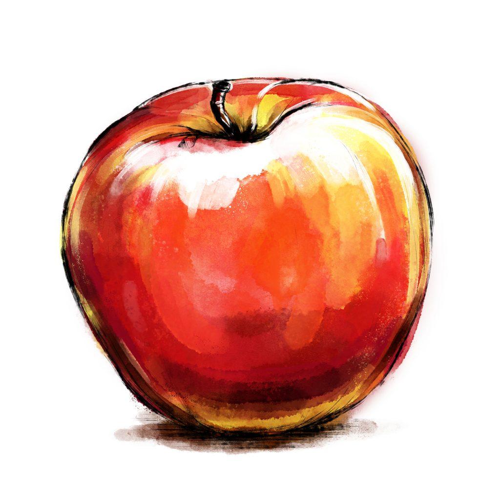 りんご体型