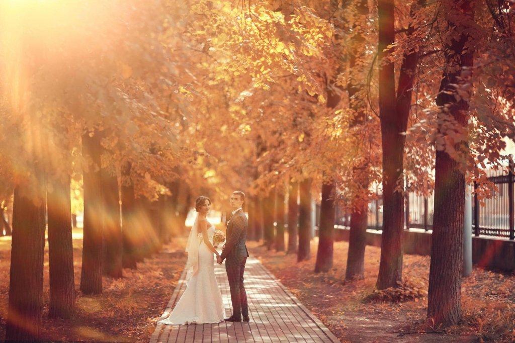 秋の結婚式が人気の理由